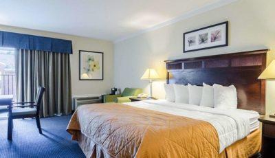 Hotel Quality 1